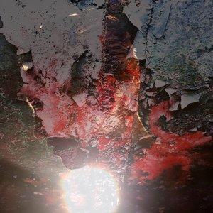 Bild für 'Veins'
