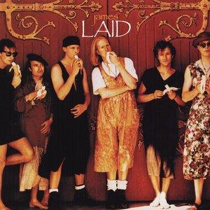 Bild für 'Laid'