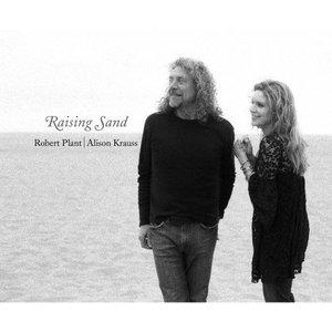 Image for 'Raising Sand'