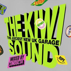 Image for 'The Kiwi Sound (DJ Mix)'