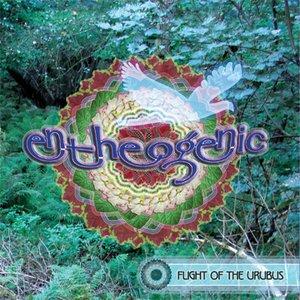 Image for 'Flight Of The Urubus'
