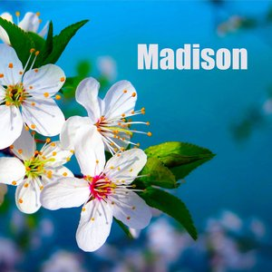 Imagen de 'Madison'