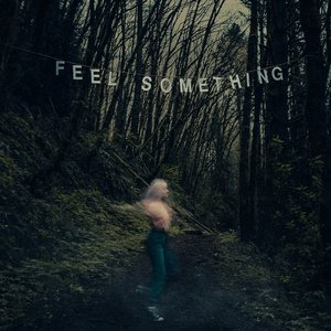 Image for 'Feel Something'
