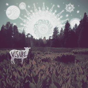 Image for 'Vesaire'
