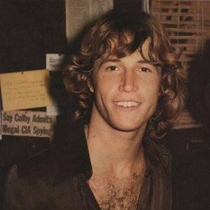 Immagine per 'Andy Gibb'
