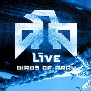 Bild für 'Birds Of Pray'