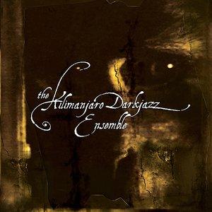 Image for 'The Kilimanjaro Darkjazz Ensemble'