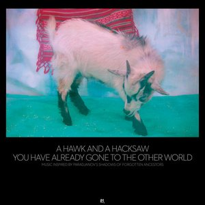 Image for 'You Have Already Gone To The Other World'