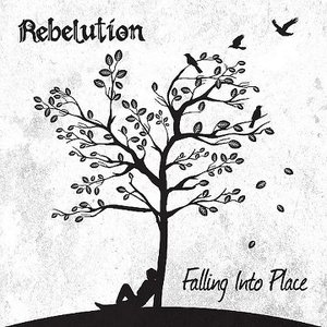 Image for 'Falling Into Place'