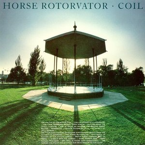 Image for 'Horse Rotorvator'