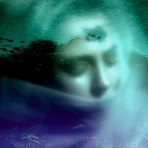 Image for 'Nott eftir nott'
