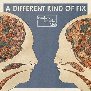 Imagem de 'A Different Kind of Fix'