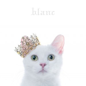 "Image for 'BEST SELECTION""blanc""'"