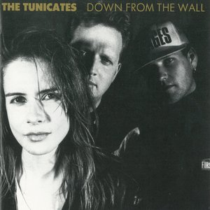 Image for 'Down From The Wall'