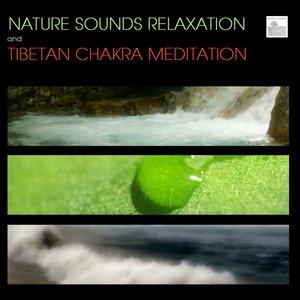Image for 'Nature Sounds Relaxation and Tibetan Chakra Meditation - Music for Relaxation Meditation, Deep Sleep, Studying, Healing Massage, Spa, Sound Therapy, Chakra Balancing, Baby Sleep and Yoga'