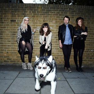 Image for 'New Young Pony Club'