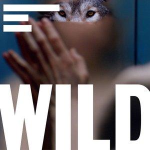 Image pour 'Wild Soundtrack'
