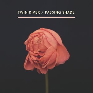 Bild für 'Passing Shade'
