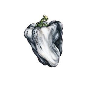 Image for 'White Pepper'