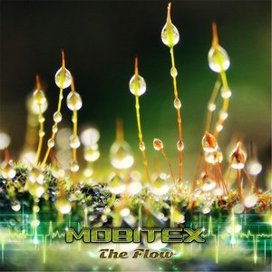 Image for 'The Flow'