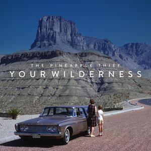 Image for 'Your Wilderness'