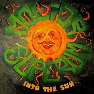 Image pour 'Into The Sun'