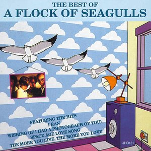 Image for 'The Best of a Flock of Seagulls'