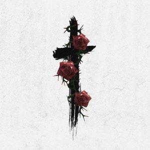 Zdjęcia dla 'Roses (Imanbek Remix)'