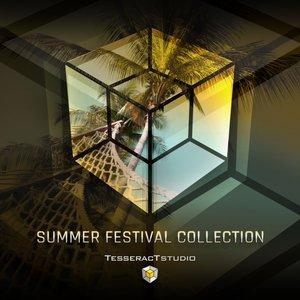 Изображение для 'Summer Festival Collection'
