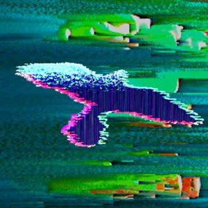 Bild für 'Davz'