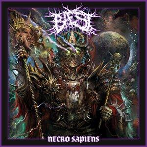 Image for 'Necro Sapiens'