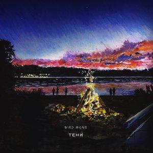 Image for 'Тени'