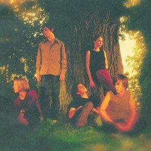 Bild för 'Pineforest Crunch'