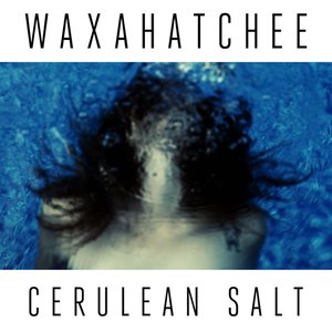 Image for 'Cerulean Salt'