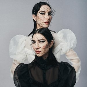 Image for 'The Veronicas'