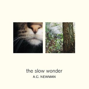 Image for 'The Slow Wonder'
