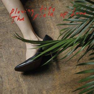 Imagem de 'Plowing Into the Field of Love'