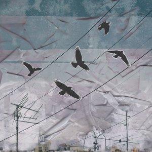 Изображение для 'Птицы. Сторона Б'
