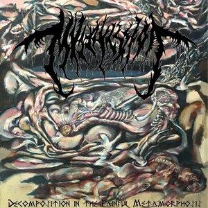 Изображение для 'Decomposition in the Painful Metamorphosis'