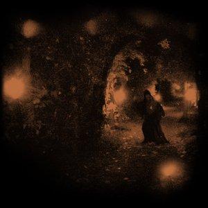 Image for 'Wallachian Cobwebs'