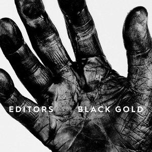 Bild für 'Black Gold: Best of Editors (Deluxe)'