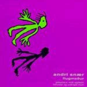 Image for 'Flugmaður'