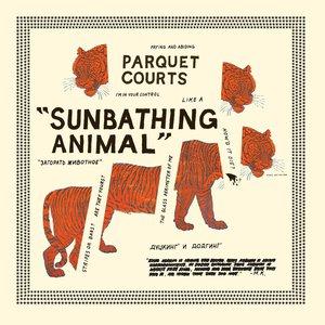 Image for 'Sunbathing Animal'