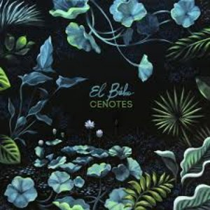 Image for 'Cenotes'