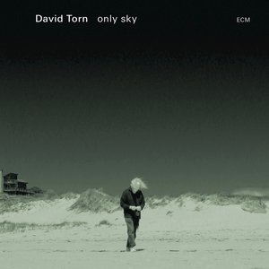 Image for 'Only Sky'