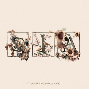 Image pour 'Colour the Small One'