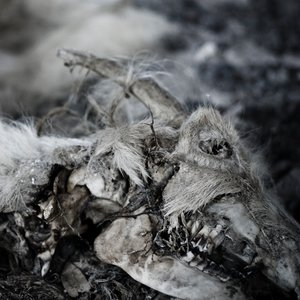 Изображение для 'When Death Comes'