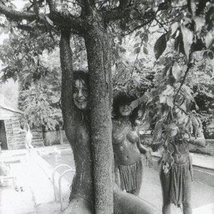 Image for 'The Slits'