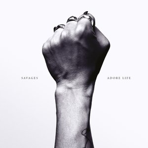 Image for 'Adore Life'