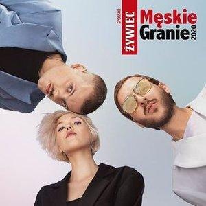 Image for 'Świt (feat. Daria Zawiałow, KRÓL & Igo)'